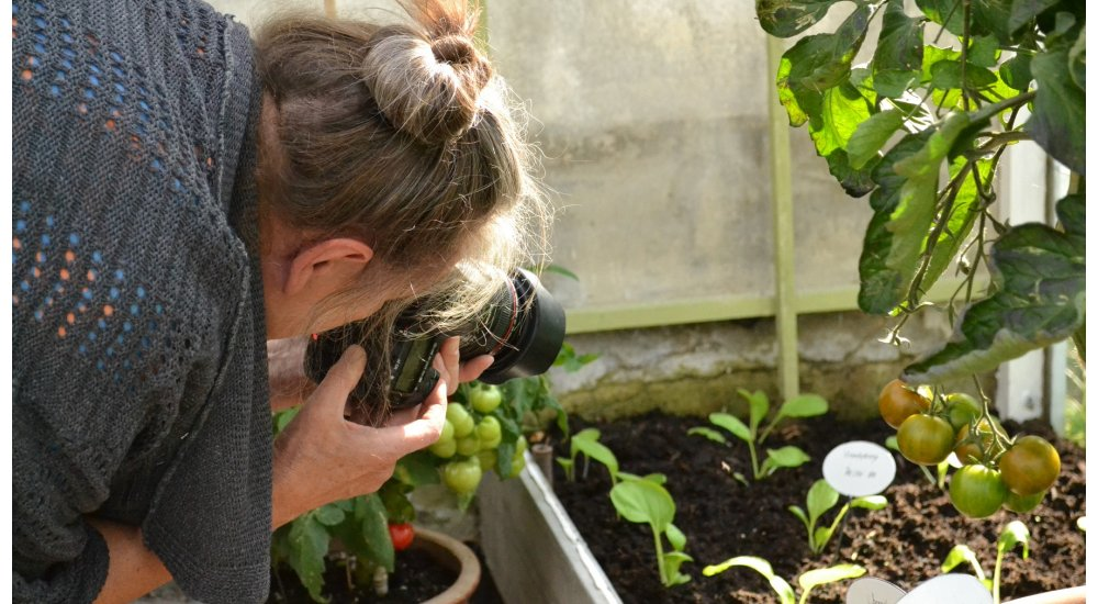 Fotoshoot i orangeriet