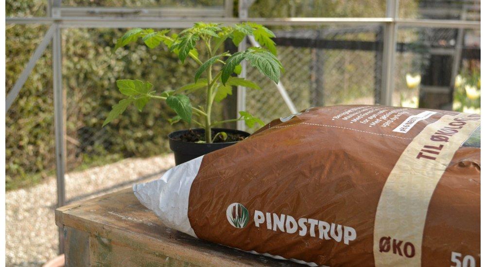 Pindstrup plantesæk