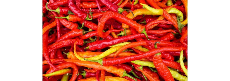 Forspiring af chili